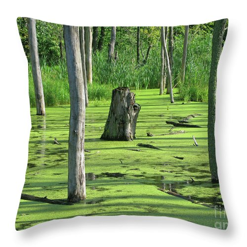Wetland Throw Pillow featuring the photograph Sunlit Wetland by Ann Horn