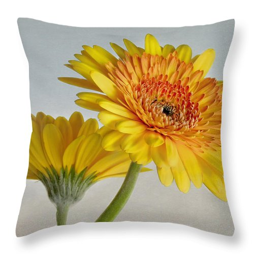 Bloom Throw Pillow featuring the photograph Sunny Side Up by David and Carol Kelly