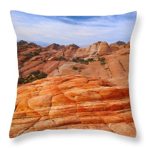 Landscape Throw Pillow featuring the photograph Sunny Side Up by Don Hall
