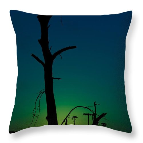 Sunrise Throw Pillow featuring the photograph Sunrise 1 by Christian Schroeder