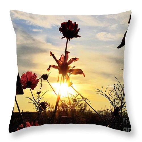 Sun Throw Pillow featuring the photograph Sunrise Angel by Tina M Wenger