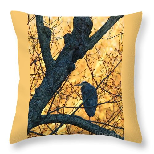 Heron Throw Pillow featuring the photograph Sunrise By James Figielski by Paulinskill River Photography
