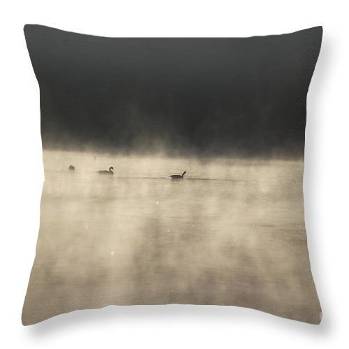 Lake Photographs Throw Pillow featuring the photograph Sunrise Geese by Melissa Petrey