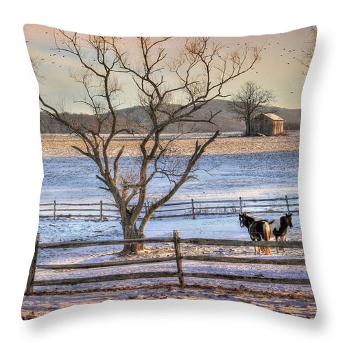 Country Throw Pillow featuring the photograph Sunrise In Hegins by Lori Deiter