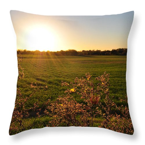 Flowers Throw Pillow featuring the photograph Sunrise In Oklahoma by Anjanette Douglas