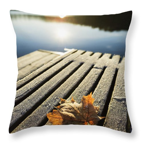 Day Throw Pillow featuring the photograph Sunrise Over Leaf On Floating Dock In by Yves Marcoux