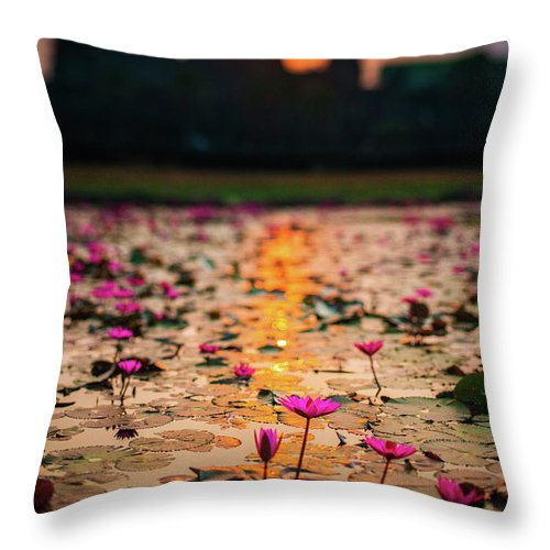 Tranquility Throw Pillow featuring the photograph Sunrise Over The Lotus Flowers Of by © Francois Marclay