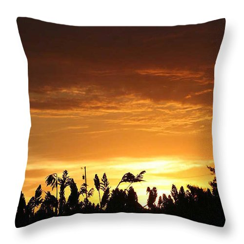 Sunrise Throw Pillow featuring the photograph Sunrise Over The Milo Field by PainterArtist FIN