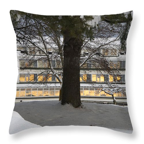 Meredith Throw Pillow featuring the photograph Sunrise Reflection by Michael Mooney