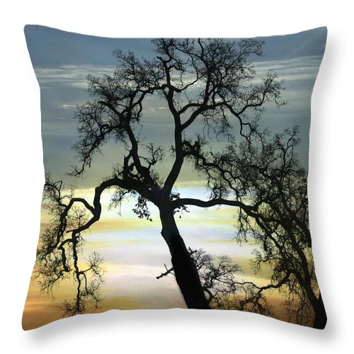 Horse Throw Pillow featuring the photograph Sunrise by Stephanie Laird