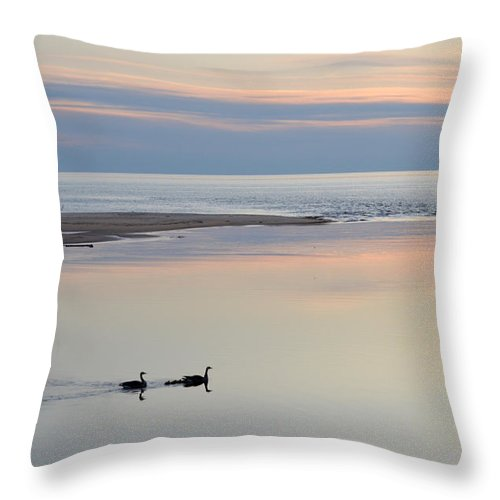Ludington Throw Pillow featuring the photograph Sunset And Geese by Linda Kerkau