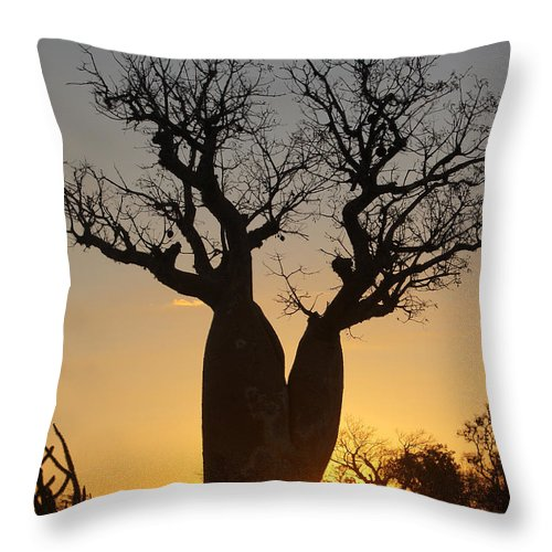 Africa Throw Pillow featuring the photograph sunset in Madagascar by Rudi Prott
