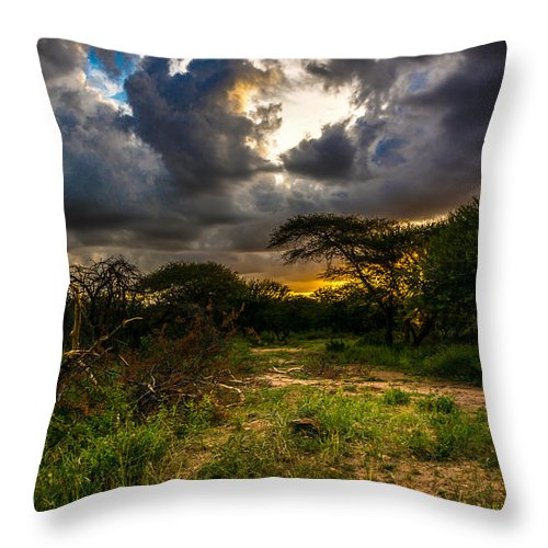 Africa Throw Pillow featuring the photograph Sunset In The Bush by Andrew Matwijec