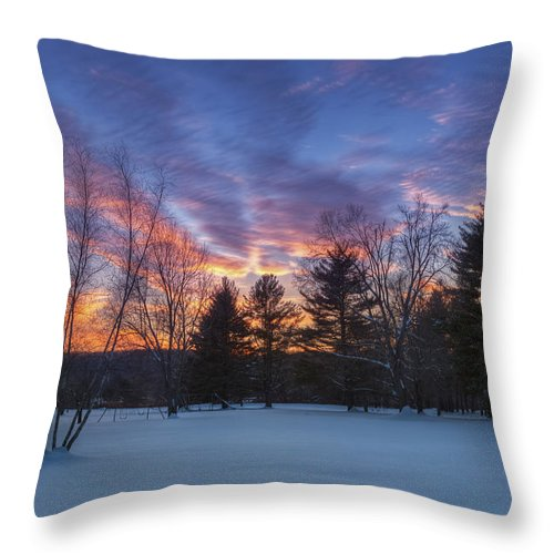 Sunset Throw Pillow featuring the photograph Sunset In The Park by Bill Wakeley