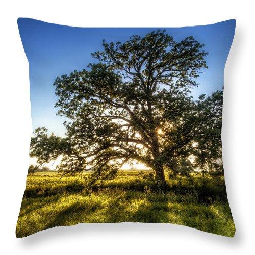 Sunset Throw Pillow featuring the photograph Sunset Oak by Scott Norris