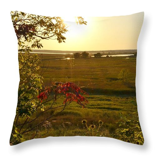 Marsh Throw Pillow featuring the photograph Sunset Over The Marsh by Mandy Frank
