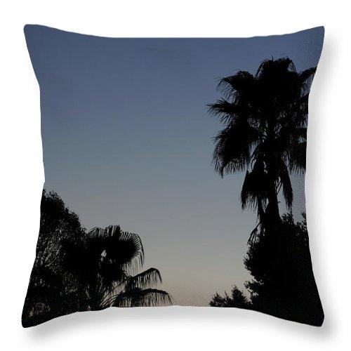 Sunset Throw Pillow featuring the photograph Sunset Palm by Allan Lovell