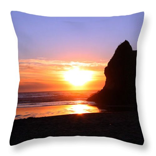 Sunset Throw Pillow featuring the photograph Sunset Reflections by Nick Gustafson