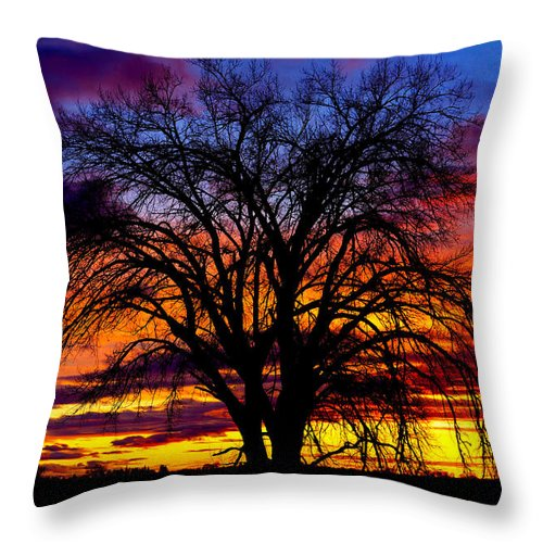 Sunset Throw Pillow featuring the photograph Sunset Silhouette by Greg Norrell