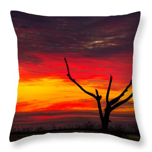 Sunset Throw Pillow featuring the photograph Sunset Solitude by Mark Andrew Thomas