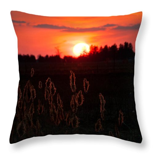 Canada Throw Pillow featuring the photograph Sunset Wheat Field by Desiree Silva