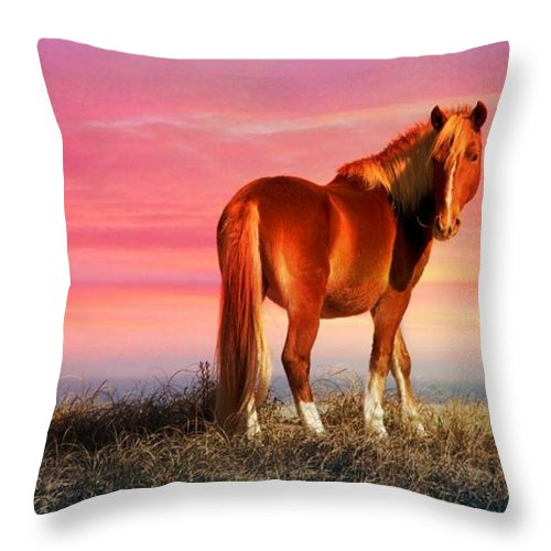 Wild Horse At Sunset Throw Pillow featuring the photograph Sunset Wild by Alice Gipson