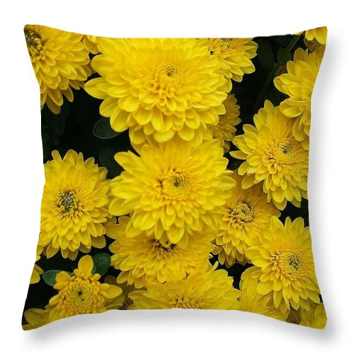 Floral Throw Pillow featuring the photograph Sunshine by Jo Dawkins