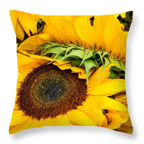 Sunflowers Throw Pillow featuring the photograph Sunshine by Mary Smyth
