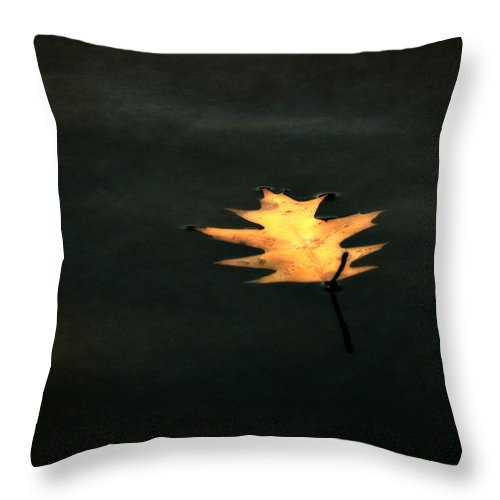 Floating Leaf Throw Pillow featuring the photograph Suspended by Michelle Calkins