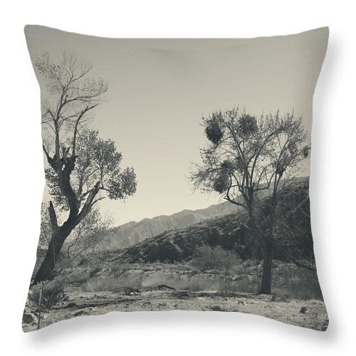 Whitewater Preserve Throw Pillow featuring the photograph Suvival Can Be Tough by Laurie Search