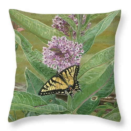 Swallowtail Throw Pillow featuring the painting Swallowtail On Milkweed by Lucinda V VanVleck