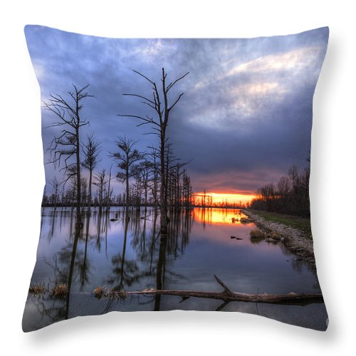 2014 Throw Pillow featuring the photograph Swamp At Dusk by Larry Braun