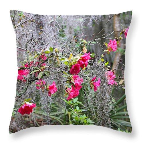Azalea Throw Pillow featuring the photograph Swamp Garden by Mary Underwood