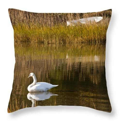 Swan Throw Pillow featuring the photograph Swan And Boat 2 by Dennis Coates