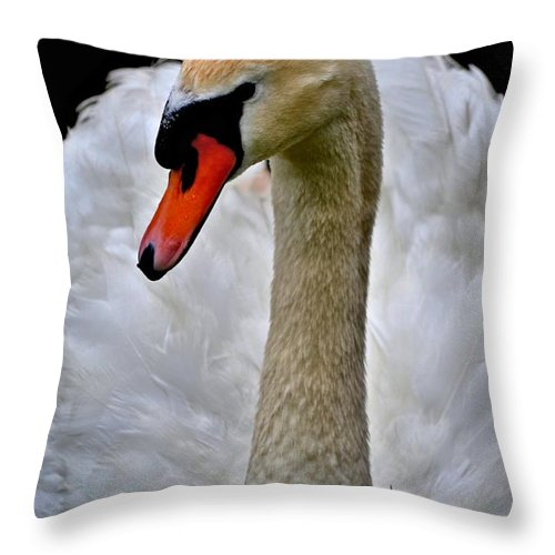 Swan Throw Pillow For Sale By Tara Potts