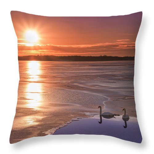 Frost Bite Throw Pillow featuring the photograph Swans Sunrise by Michael Ver Sprill