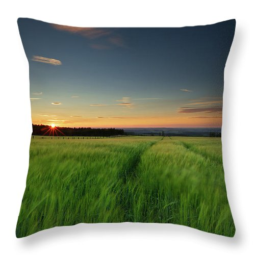 Tranquility Throw Pillow featuring the photograph Swaying Barley At Sunset by By Simon Gakhar