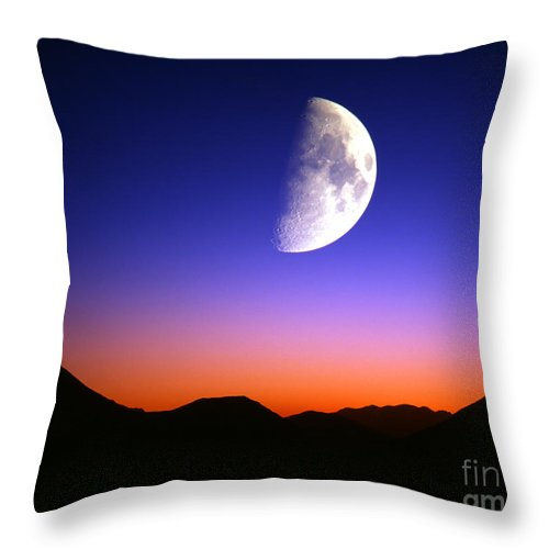 European Throw Pillow featuring the photograph Sweet Dreams by Edmund Nagele