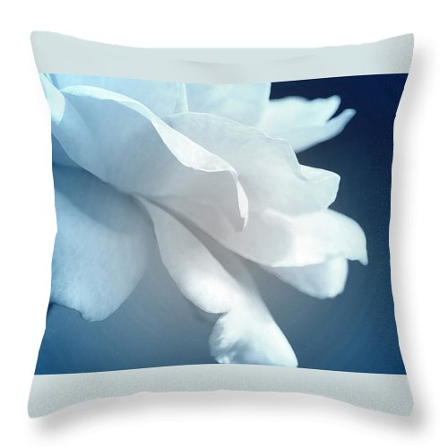 Roses Throw Pillow featuring the photograph Sweet Light Of Heaven by The Art Of Marilyn Ridoutt-Greene