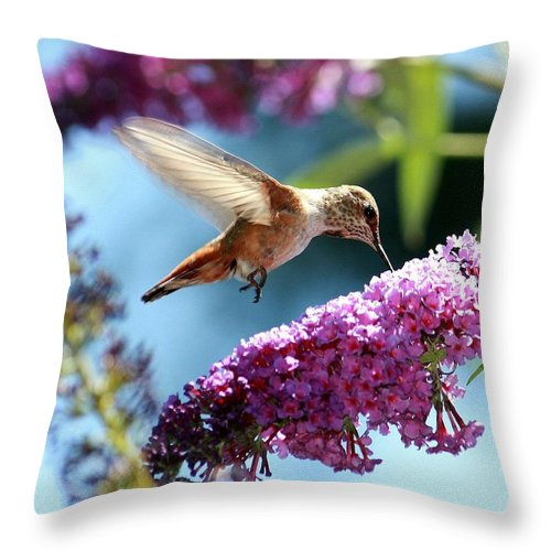 Sweet Throw Pillow featuring the photograph Sweet by Patrick Witz