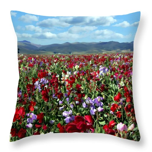 Flowers Throw Pillow featuring the photograph Sweet Peas Forever by Kurt Van Wagner