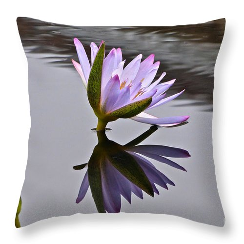 Sweet Surrender Throw Pillow featuring the photograph Sweet Surrender by Byron Varvarigos