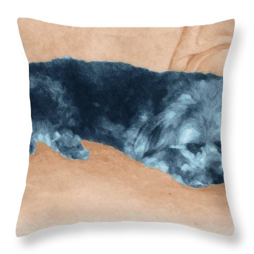 Dog Throw Pillow featuring the photograph Sweetee by Ginny Schmidt