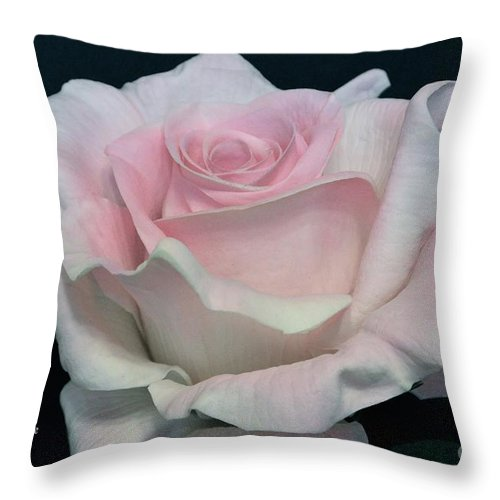 Anniversary Throw Pillow featuring the photograph Sweetheart by Jeannie Rhode