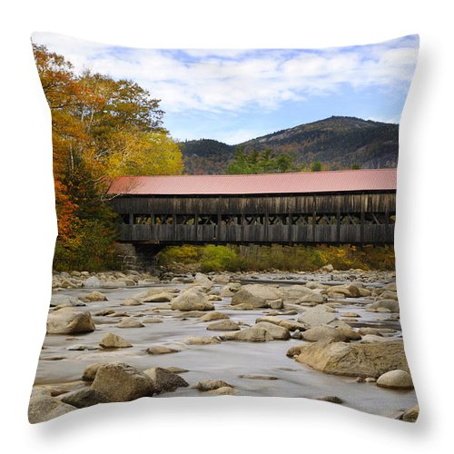 Autumn Throw Pillow featuring the photograph Swift River Vista by Luke Moore