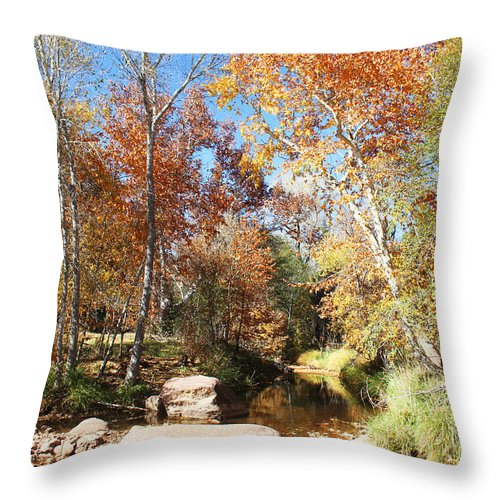 Sycamore Throw Pillow featuring the photograph Sycamore And Cottonwood Trees Along The East Verde River by Tom Janca