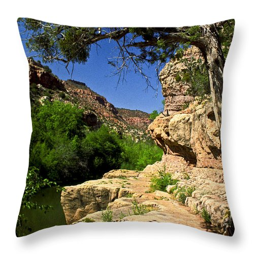 Arizona Throw Pillow featuring the photograph Sycamore Canyon by Kathy McClure