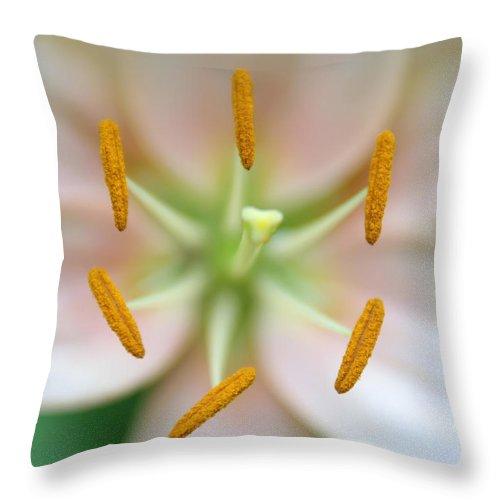 Space Throw Pillow featuring the photograph Symmetrical Flower Closeup by Alex Grichenko