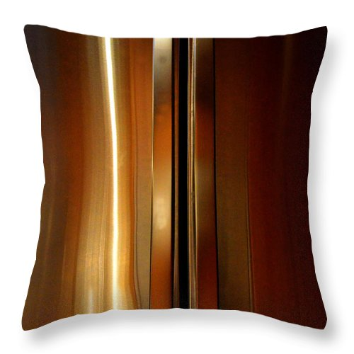 Newel Hunter Throw Pillow featuring the photograph Symmetry 3 by Newel Hunter