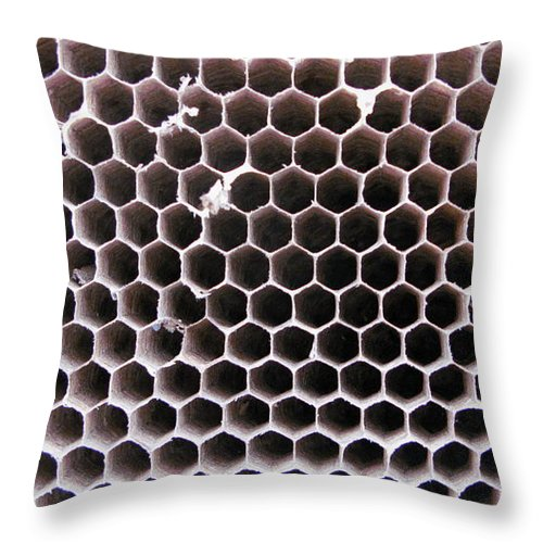 Hornets Nest Throw Pillow featuring the photograph Symmetry by Maria Joy